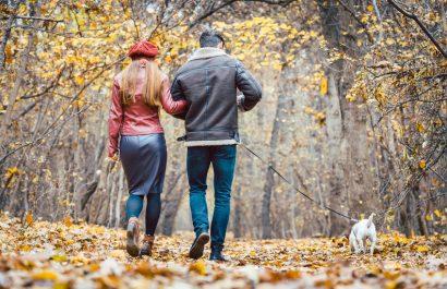 Wer kriegt den Hund? Umgang mit Haustieren bei Trennung oder Scheidung